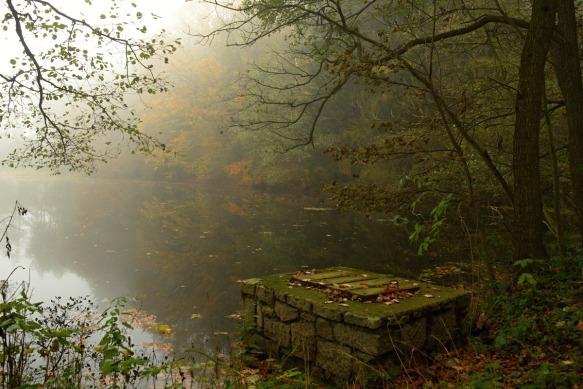 Rybník Žabinec