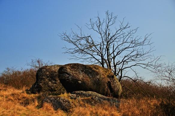 Miskové kameny poblíž Dolních Heřmanic